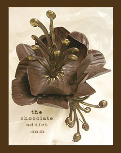 Chocolate decoration - daisy