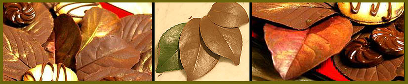 chocolate-leaves-banner
