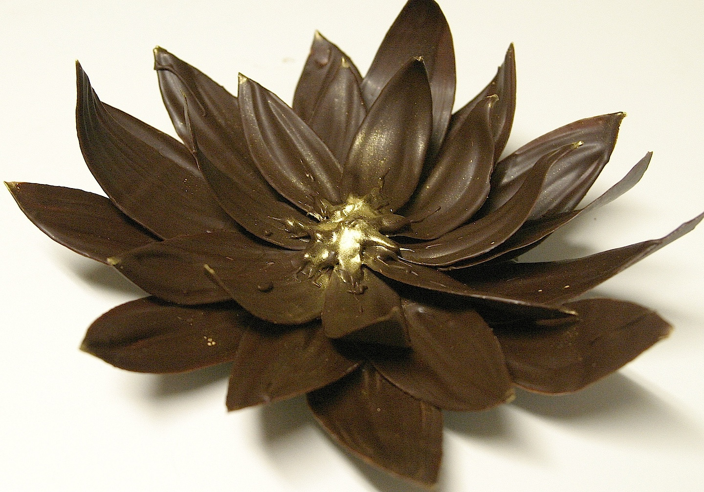 Images Of Chocolate Flowers Magical Chocolate Lotu...